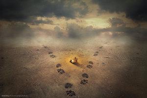 footprints_by_evenliu-d7ifhwi